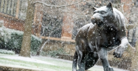 Statue of panther with snow falling