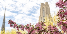 Cathedral of learning in the spring