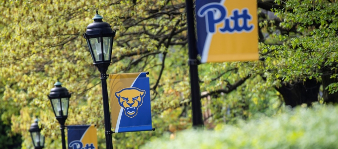 Pitt Panther Flags on campus